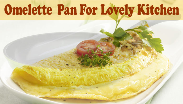 9 Best Omelette Pan Reviewed For 2021 And Buying Guide