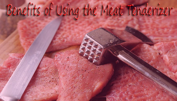 7 Best Meat Tenderizers Reviewed in 2020 and Buying Guide.