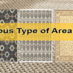 Type of Area Rugs