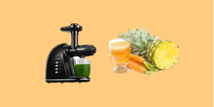 Whey Need A Masticating Juicer in Your Kitchen?